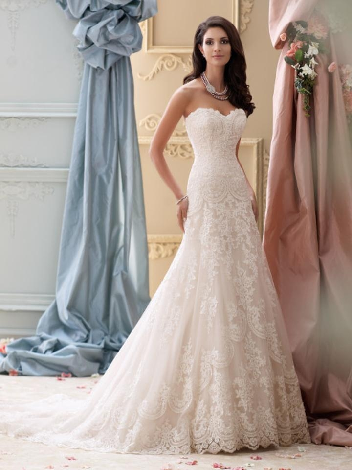 david tutera for mon cheri ivorygardenia corded lace applique and tulle over luxurious satin 115237 justice feminine wedding dress size 2 xs 58 Where To Buy David Tutera Wedding Dresses