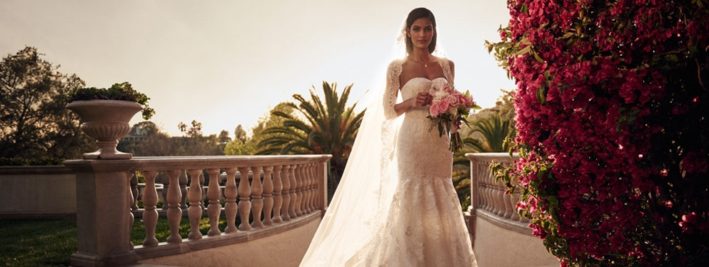 davids bridal reviews womens clothing at mayfaire town Wedding Dresses Wilmington Nc