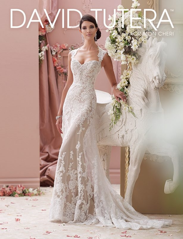 gorgeous wedding dresses david tutera for mon cheri Where To Buy David Tutera Wedding Dresses